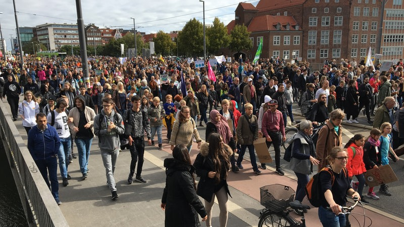 Teilnehmer der Fridays-for-Future-Demo in Bremen.